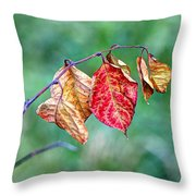 Leaving Summer Behind Throw Pillow