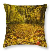 Leaving The Way Throw Pillow by Peter Coskun