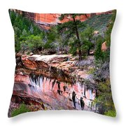 Ledge At Emerald Pools In Zion National Park Throw Pillow
