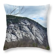 Ledge In New Hampshire Throw Pillow