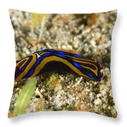 Leech Headshield Slug Throw Pillow