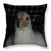 Leghorn Chicken Throw Pillow