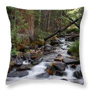 Lehman Creek In Great Basin National Park Throw Pillow