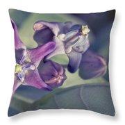 Lei Pua Kalaunu - Crown Flower - Calotropis Gigantea Throw Pillow