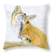 Leisure Fox Throw Pillow