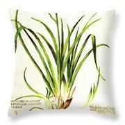 Lemon Daylily Botanical Throw Pillow