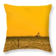Lemon Fisher Throw Pillow
