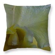 Lemon Ice Throw Pillow