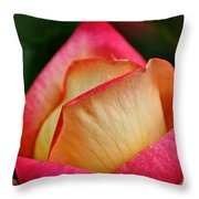 Lemon Raspberry Rosebud Throw Pillow