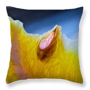 Lemon Seed Throw Pillow