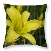Lemon Yellow Daylily Blossom Throw Pillow