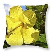Lemon Yellow Hibiscus Throw Pillow