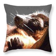 Lemur Lounging Throw Pillow