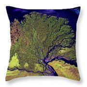 Lena River Delta Throw Pillow by Adam Romanowicz