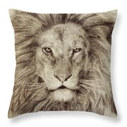 Leo Throw Pillow by Eric Fan