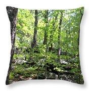 Leominster Massachusetts State Reservation Throw Pillow