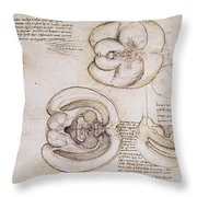 Leonardo: Ventricles, C1508 Throw Pillow