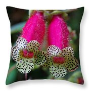 Leopard Flower - K. Digitaliflora Throw Pillow