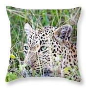 Leopard In The Grass Throw Pillow