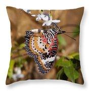 Leopard Lacewing Butterfly Dthu619 Throw Pillow by Gerry Gantt