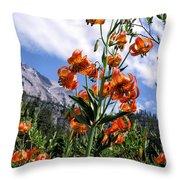 Leopard Lilies Below Lassen Peak Throw Pillow