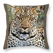 Wild Leopard In Botswana Throw Pillow