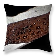 Leopard Patterned Sting Ray Fish Art Prints Throw Pillow