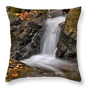 Lepetit Waterfall Throw Pillow
