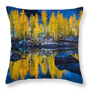 Leprechaun Tamaracks Throw Pillow