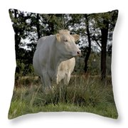 Les Belles Blondes Throw Pillow
