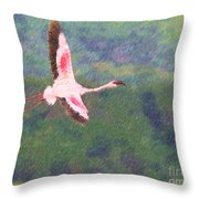 Lesser Flamingo Phoenicopterus Minor Flying Throw Pillow