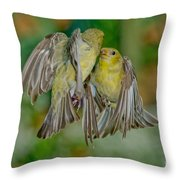 Lesser Goldfinch Females Fighting Throw Pillow