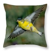 Lesser Goldfinch Male-flying Throw Pillow