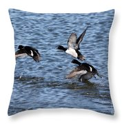 Lesser Scaup Ducks Throw Pillow