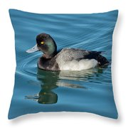 Lesser Scaup Male Swimming Throw Pillow