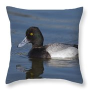 Lesser Scaup Male Throw Pillow
