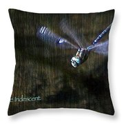 Lessons From Nature 1 - Be Iridescent Throw Pillow