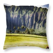 Lest We Forget V5 Throw Pillow