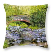 Lester Park Bridge Throw Pillow