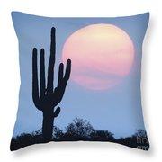 Let Beauty Awake Throw Pillow