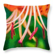 Let It All Hang Out - Paint Throw Pillow
