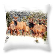 Let It Snow - Barbara Chichester Throw Pillow
