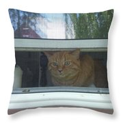 Let Me Out Cat Picture Throw Pillow
