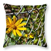 Let Me Out Throw Pillow