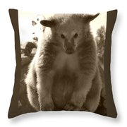 Let Me Think About It Throw Pillow