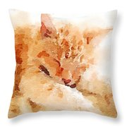 Let Sleeping Cats  Throw Pillow
