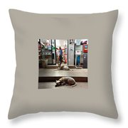 Let Sleeping Dogs Lie Where They May Throw Pillow