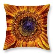Let The Sun Shine In Throw Pillow