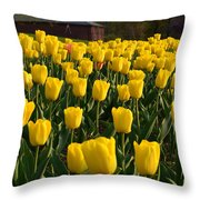Let The Sunshine Throw Pillow
