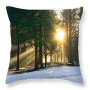 Let There Be Light - Sun Beams Pouring Through A Forest Scene. Throw Pillow by Jamie Pham